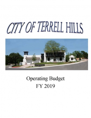 Approved 2019 Budget